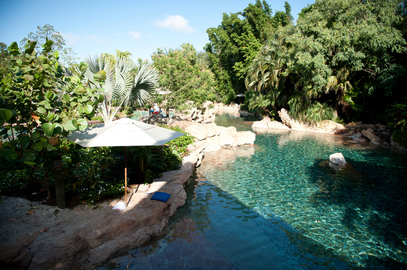 Discovery Cove, Sea World, Florida, Orlando, Dolphins, Swim, Park, Beach, Lazy, River, Relaxed, Scenery, Landscape,