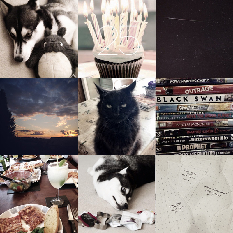 FAIIINT instagram collage, my week, lately, recently, siberian husky, shooting star, meteor, dvds, movies, black cat, norwegian forest cat, sunset, birthday, cupcake