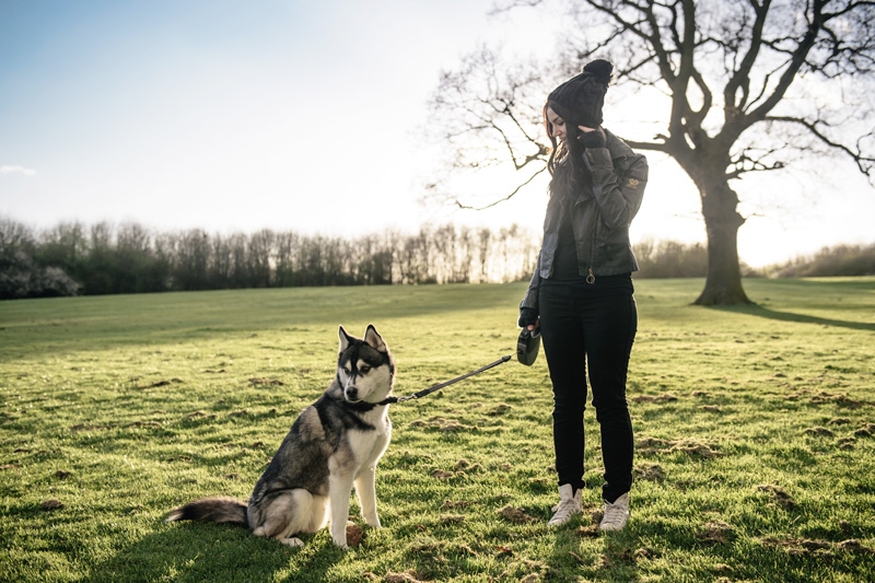 Fashion blogger Stephanie of FAIIINT wearing Belstaff waxed sammy miller jacket, Meltin Pot jeans, white leather Converse high tops, Knitted beanie to walk Nico the Siberian Husky dog in the park at sunset.