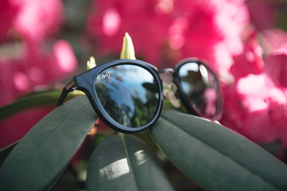 FAIIINT Maui Jim Kolohe sunglasses on pink flowers