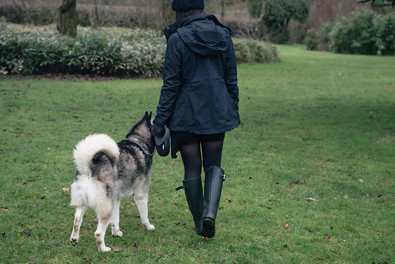 Fashion blogger Stephanie of FAIIINT with husky dog Nico wearing OASAP pom pom beanie, The North Face Evolution TriClimate 3 in 1 jacket, H&M asymmetric jumper, Hunter wellington boots, Topshop faux fur handwarmers. All black everything dark style winter dog walking outfit.