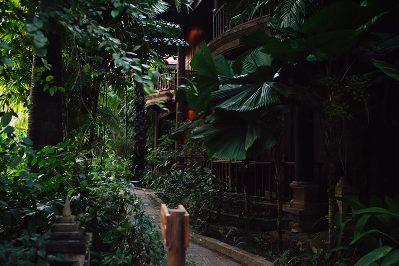 Sokhalay Angkor Villa Resort in Siem Reap Cambodia, pathway through the forest with tropical plants.