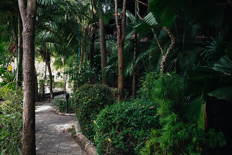 Sokhalay Angkor Villa Resort in Siem Reap Cambodia, pathway through the trees.