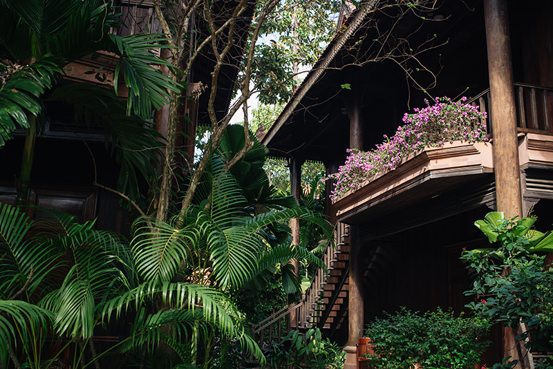 Sokhalay Angkor Villa Resort in Siem Reap Cambodia, tropical trees and flowers.