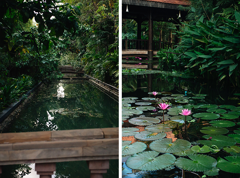 Sokhalay Angkor Villa Resort in Siem Reap Cambodia, bridge over pond water with lily pads and flowers.