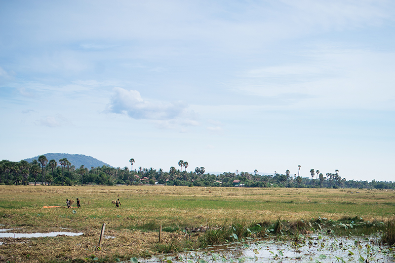 Countryside landscape in Siem Reap Cambodia.