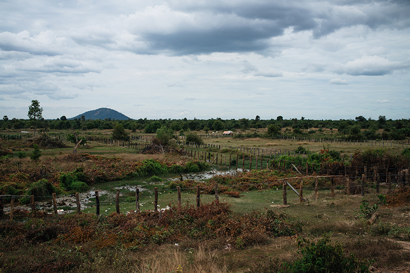 Countryside landscape in Siem Reap Cambodia, fields and Kulen mountain.