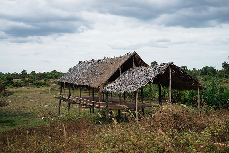 Countryside landscape in Siem Reap Cambodia wooden shack shelter.