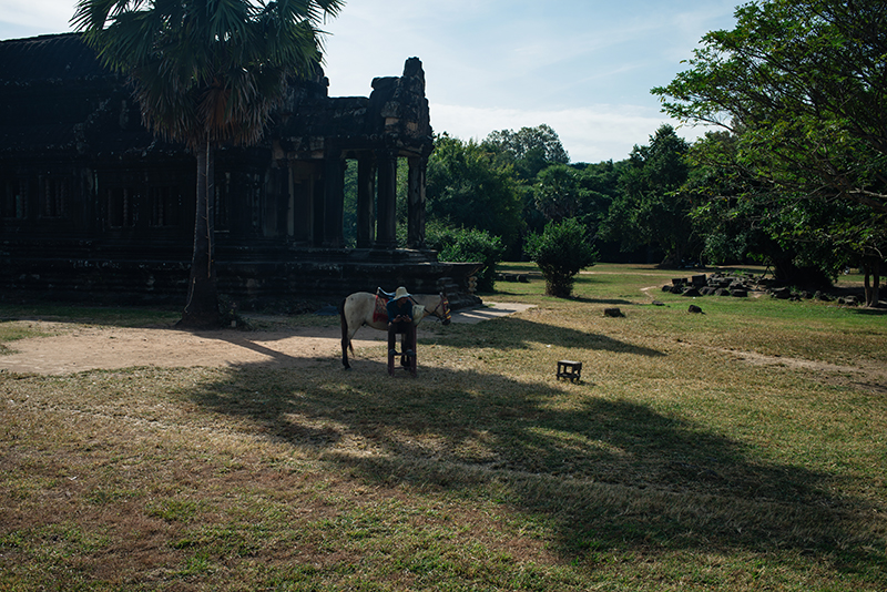 Man with horse at Angkor Wat temple complex Siem Reap Cambodia.