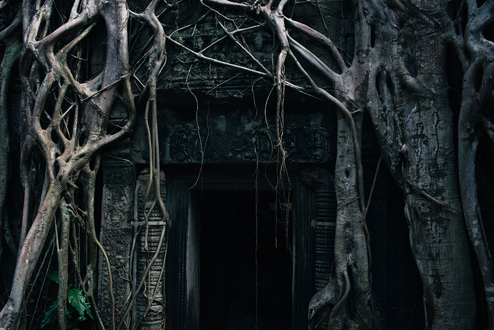 Ta Prohm temple doorway Siem Reap Angkor Cambodia. Crumbling ruins reclaimed by nature and overgrown with trees and roots.