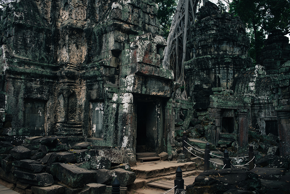 Ta Prohm temple Siem Reap Angkor Cambodia. Crumbling ruins reclaimed by nature and overgrown with trees and roots.